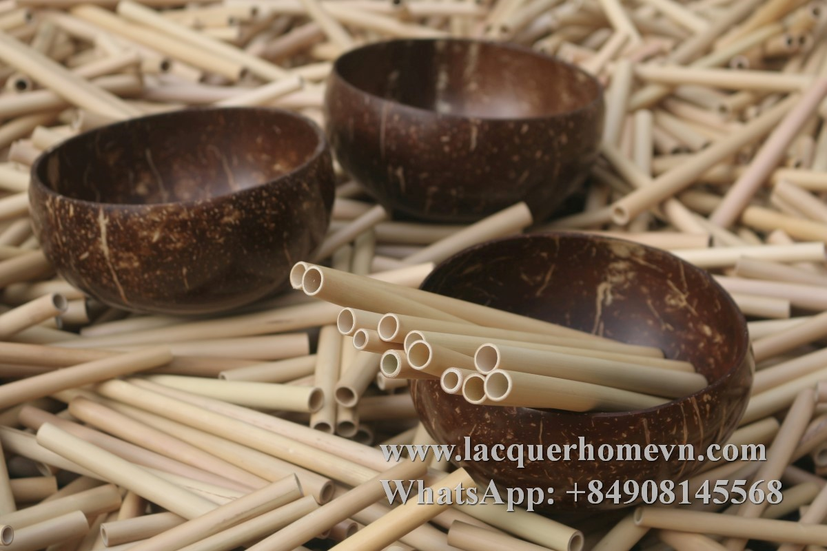 Natural coconut bowl with bamboo straws